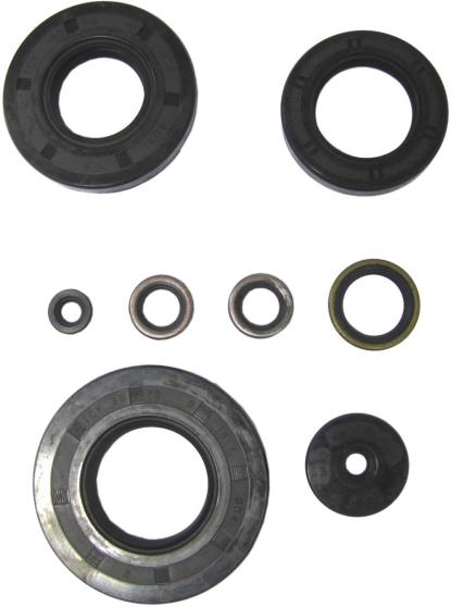 Picture of Oil Seal Kit Kawasaki KH750