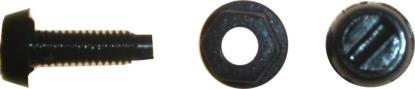Picture of Bolts Number Plate Black (Per 100)