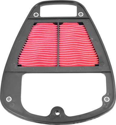 Picture of Air Filter Kawasaki VN900 06-14
